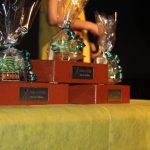 Ziegelsteine als Siegerpreis (2015)